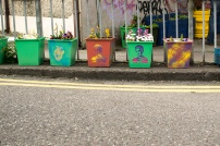 Colourful plant boxes on Douglas St