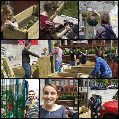 Volunteering (44)