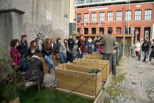 Cork Food Harvest Festival Talk